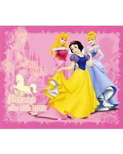 Disney Princess Dreams Blanket